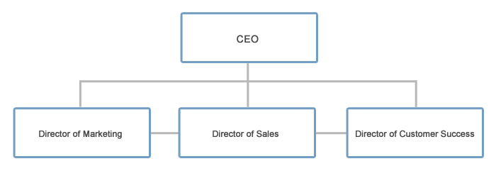 director-of-customer-success