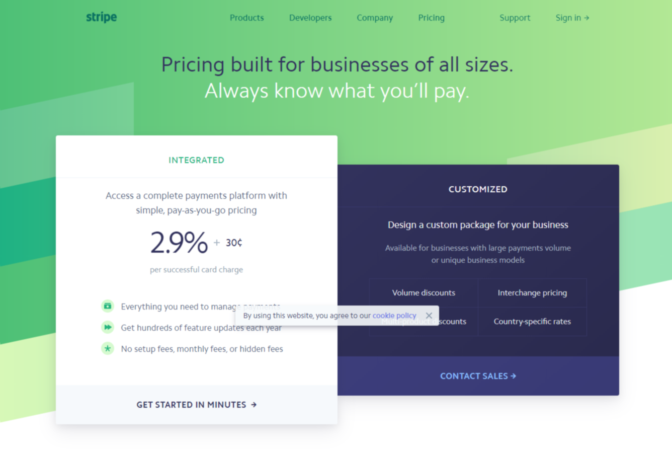 Stripe Payment Processing Tool Webpage